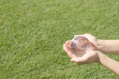エコ ECO 透明 大切な地球 ボール 地球儀 m030633