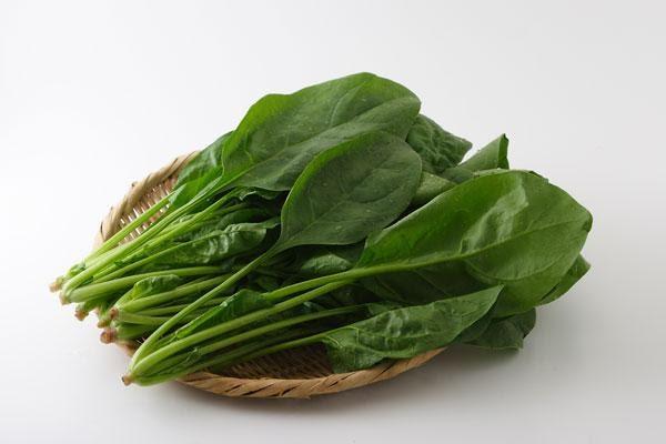 ほうれん草 画像1 野菜 無料写真素材 フリー写真素材
